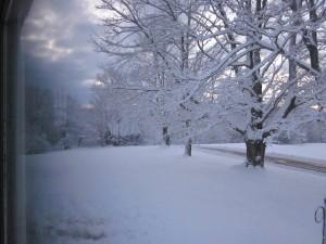 Late Feb Storm