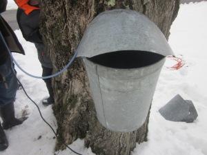 One bucket ready!